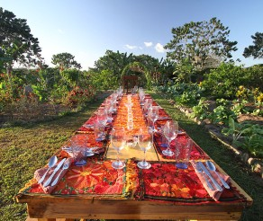 Costa Rica Yoga Retreat, Permaculture Center, Surf Camp and Eco Village